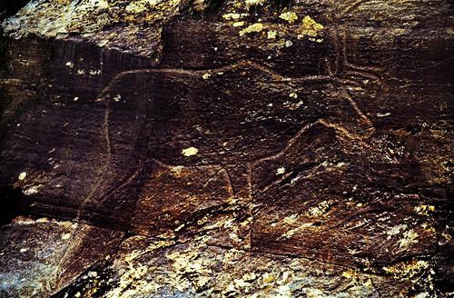 "Norwegen 1998 (504) Bølareinen • <a style=""font-size:0.8em;"" href=""http://www.flickr.com/photos/69570948@N04/49472927618/"" target=""_blank"">View on Flickr</a>"