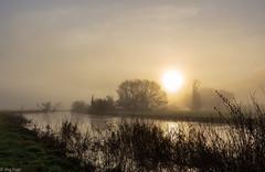 wake up (Jörg Kage) Tags: deutschland germany saarland sonnenaufgang sunrise natur nature nebel fog fluss river landschaft landscape sonne sun baum bäume tree trees blies himmel sky clouds canon canonlens canoneos700d eos700d