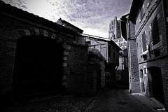 Vers la cathédrale (Un jour en France) Tags: cathédrale ciel noiretblanc noiretblancfrance tarn albi cielpaysage monochrome black canoneos6dmarkii canonef1635mmf28liiusm