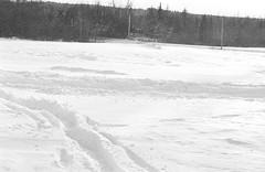 2018121901_15 (onebellboy) Tags: wholerollproject wwwellsworthbellcom onebellboy kodak trix nikonf5 50mmf18g diafine nikonsupercoolscan4000 blackandwhite monochrome grain outdoors maine yamah bigwheel bw80 exeter winter snow dirtbike
