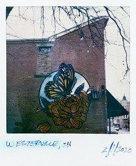 (gryphon1911 [A.Live]) Tags: sonar sx70 mural butterfly instant film color polaroid