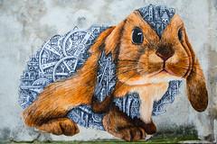 La carotte ou le bâton / Carrot or stick? (fidgi) Tags: paris streetart graffiti lapin rabbit bleu blue urban wall mur canoneos5dmk3 canon tamron ardif
