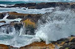 Oregon Coast (lckoch61) Tags: waves rocks rockformations coast oregon