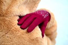 Comfortable... (Maria Godfrida) Tags: smileonsaturday gloves winter object closeup clothes accessories bokeh fluffy coat hand brown darkred sparkling soft warm rhinestones