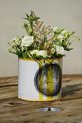 Flower in a vase (Mario Ottaviani Photography) Tags: flowers vase macro fiori vaso outdoorphotography photographylovers photographysouls picoftheday pictureoftheday earthescope magicpictsony sonyalpha nature marioottaviani