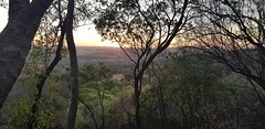 Through the Trees (Rckr88) Tags: sunset sunsets magaliesburg southafrica magaliesburgsouthafrica south africa montain mountains tree trees views