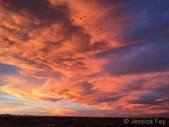 02-01-20 - Jessica February 1, 2020 - A stunning sunset starts the month. (Jessica Fey)2