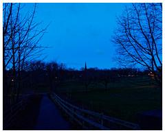 Early Morning. (Tony Joness) Tags: olympus em1mkii panasonichfs12060 harrogate silhouette dxophotolab3 blue earlymorning
