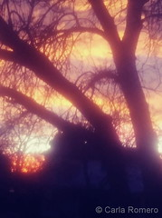 February 1, 2020 - A stunning sunset starts the month. (Carla Romero)