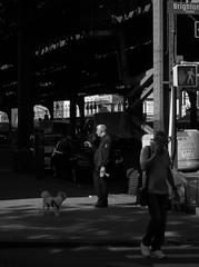 Morning Smokes (krista ledbetter) Tags: newyorkcity city street nyc brooklyn