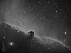 The Horsehead Nebula in Hydrogen Alpha (Dark Arts Astrophotography) Tags: astrophotography astronomy asi1600mc space sky stars star science nebula night nature natur nightsky horsehead barnard 33 b33 barnard33 astrometrydotnet:id=nova3912727 astrometrydotnet:status=solved