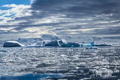 """ Flocos de Luz "" (JJSantosphoto) Tags: jjsantosphoto jjsantos travel viagem viagens canoneos1dx canon eos 1dx gelo flocos montanha mar oceano ef28135mmf3556isusm ef28135mm ef antartida antartica peninsulaantartida peninsulaantarctica peninsula expediçãoantartida expedição expediçãoantarctica iceberg"