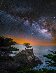 Lone Cypress Tree Pebble Beach California Milky Way Fuji GFX100 Starry Night Sunset Dusk! McGucken Master Medium Format Fine Art Landscape Nature Photography! dx4/dt=ic Fujifilm GFX 100 &  Fujifilm FUJINON GF 23mm F/4 R LM WR Lens for GFX Medium Format! (45SURF Hero's Odyssey Mythology Landscapes & Godde) Tags: golden gate bridge san francisco beach milky way fuji gfx100 starry night sunset dusk dr elliot mcgucken master medium format fine art landscape nature photography dx4dtic fujifilm gfx 100 fujinon gf 23mm f4 r lm wr lens baker reflections lone cypress tree pebble california for