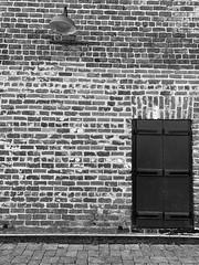 (meghanavdeshpande) Tags: blackandwhite bw patterns bricks doorsandwindows blackandwhitephotography puertasyventanas iphonephotography hiking roswellmill vickerycreektrail