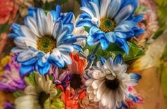 Beautiful flowers (zairakhan) Tags: bouquet beautifulflowers indoor loveforflowers