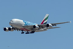 """A6-EOQ 