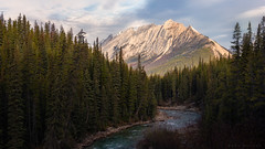 Jasper National Park (Mark McLeod Photography) Tags: autumn britishcolumbia banff 2018 canada mountains colour fall forest landscape rockies jasper jaspernationalpark markmcleod markmcleodphotography river