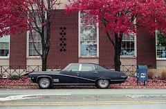 Skylark Profile (bhop) Tags: leica m6 rangefinder vintagecamera rangefindercamera leicam6 kodak kodakfilm portra400 portra kodakportra400 iso400 summicron 50mm skylark vintagecar american car classiccar