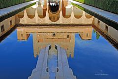 Reflets.. (PACHA23) Tags: alhambradegrenade bassindeau palaisnasrides reflet espagne andalousie