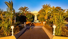 morning cat walk (werner boehm *) Tags: wernerboehm kayaartemis famagusta cyprus garden cart fountain