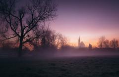 Good Morning Neuötting (der_peste (on/off)) Tags: sunrise sunset bluehour silhouettes church trees shadows mist fog