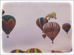 Full of Hot Air  (FILM) (* Gemini-6 * (on&off)) Tags: ballons bear hotairballons transportation sky flying 35mm colorslide scanned framed