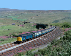 40099 At Garsdale (chrissyMD655) Tags: settle carlisle garsdale dandry mire viaduct class 40 40099 br blue
