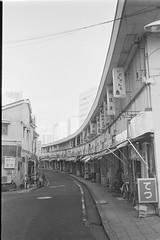 横浜の定番