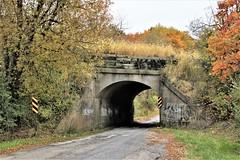 One-Lane Bridge (birdsetcetera) Tags: bridge viaduct railwayviaduct amtrak onelane fall fallfoliage autumn october 2019 johntrapp buchanantownship berriencounty michigan michiana fallcolors