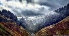 February Mist (::D12JKL::) Tags: trees heather peakdistrict hills pines moors snakepass ladybower a57 mist clouds river dam sunrays conifers lightshafts sonyrx100 landscape