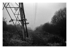FILM - Along the National Grid (fishyfish_arcade) Tags: 35mm analogphotography bw blackwhite blackandwhite filmphotography filmisnotdead hp5 istillshootfilm monochrome nikkor2880f3556afd nikkor50mmf18afd nikonf80 powerlines analogcamera film ilford mist mono pylon