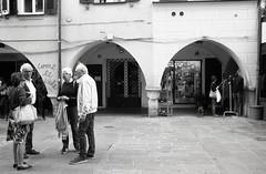 """ come le viole...."" (Davide Zappettini) Tags: street talking city urban people davidezappettiniphotography filmphotography filmbw kodaktmax rapallo"