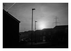 FILM - Suburban sunrise (fishyfish_arcade) Tags: 35mm analogphotography bw blackwhite blackandwhite filmphotography filmisnotdead hp5 houses istillshootfilm monochrome nikkor2880f3556afd nikkor50mmf18afd nikonf80 sunrise analogcamera film ilford mist mono suburbia suburbs