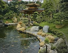 Nan Lian Garden (Steven Tyrer) Tags: nanlian convent water fish pagoda buddhist calm china meditation faith sonya6000