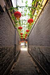 Alley off of Liulichang Street in Beijing (` Toshio ') Tags: toshio beijing china chinese liulichang antique alley asia asian lantern narrow plants fujixt2 xt2 fuji vine shops red city