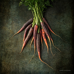 Carrots (saraghedina) Tags: square healthy vegetable vegan bunch leaves vibrant orange purple red green fineart stilllife canon foodstyling foodphotography color fresh raw spring root carrots