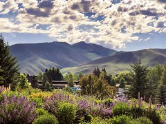 Sun Valley Idaho (pete4ducks) Tags: idaho sunvalley 2019 clouds sky mountains flowers green travel vacation roadtrip adobephotoshop 500views