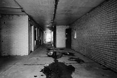 Walk Toward The Light (Dysfunctional Photographer) Tags: abandoned hallway doors concrete brick water debris decay south motel pinebluff arkansas 2020 usa nikon z7 nef lr monochrome blackwhite urban