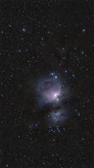 Orion! (federicojakimowicz) Tags: pentaxk1 ioptronskyguiderpro pentaxfa400mmedif orion nebulae deepsky astrophotography astro pentax astrometrydotnet:id=nova3911417 astrometrydotnet:status=solved
