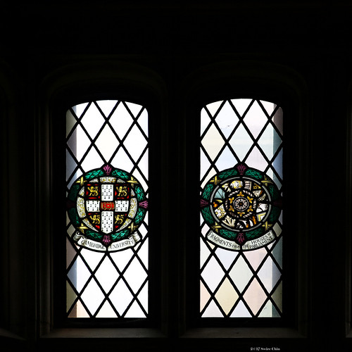Stained glass windows: Cambridge University and Fragments from the Houses of Parliament