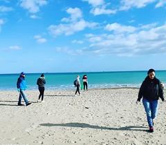 "Recogida de plásticos en Playa de El Saler • <a style=""font-size:0.8em;"" href=""http://www.flickr.com/photos/137394602@N06/49486246592/"" target=""_blank"">View on Flickr</a>"