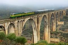 PTG Tours Zafra - Huelva - Zafra. (Félix_252) Tags: tours ptg alsa renfe 2100 321 alcolea huelva puente train tren ffcc andalucía españa spain odiel río