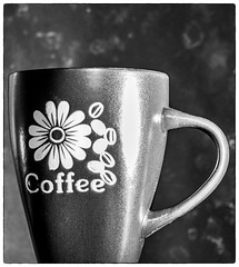 Side lit, back lit, front lit, any light is good for coffee (035/366) (johnstewartnz) Tags: crazytuesdaytheme crazytuesday sidelit sidelight coffee coffeecup blackwhite blackandwhite bw monochrome niksilvereffectspro canon canonapsc apsc eos 7d2 7dmarkii 7d canon7dmarkii canoneos7dmkii canoneos7dmarkii 2470 2470mm ef2470mmf4l canonef2470f40l tripod 366photochallenge 366project 366the2020edition 3662020 onephotoaday2020 onephotoaday oneaday project366 day35366 04feb2020