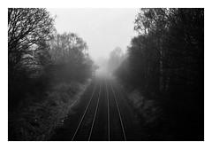 FILM - To a vanishing point (fishyfish_arcade) Tags: 35mm analogphotography bw blackwhite blackandwhite filmphotography filmisnotdead hp5 istillshootfilm monochrome nikkor2880f3556afd nikonf80 analogcamera film ilford mono railway tracks vanishingpoint leadinglines leadinlines
