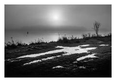 FILM - Sunrise (fishyfish_arcade) Tags: 35mm analogphotography bw blackwhite blackandwhite filmphotography filmisnotdead hp5 istillshootfilm monochrome nikkor2880f3556afd nikonf80 analogcamera film ilford mono sunrise lake rothervalley
