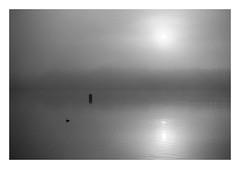 FILM - Still (fishyfish_arcade) Tags: 35mm analogphotography bw blackwhite blackandwhite filmphotography filmisnotdead hp5 istillshootfilm monochrome nikkor2880f3556afd nikonf80 analogcamera film ilford mono sunrise lake rothervalley