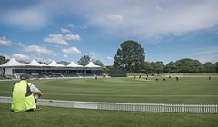 Hagley Oval (tom ballard2009) Tags: christchurch newzealand hagley park oval cricket sport ground landscape summer game field