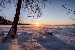Cold and Bright. (A.Koponen) Tags: canon eosr ef1635mmf40l lseries hoya lake snow ice kallavesi kuopio sunrise sunsetsunrise suomi finland finnishphotography fullframe winter winterwonderland canonphotography