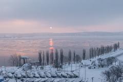 Matin de smog (otomomichiko) Tags: snow winter sunrise smog sky river cloud boat trees tokinasd1628f28iffx