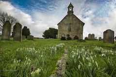At peace with the Snowdrops (Through Bri`s Lens) Tags: sussexdowns bunctonchurch wiston snowdrops graveyard church churchyard brianspicer canon5dmk3 canon1635f4 focusstack